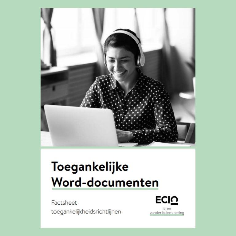 042 web toegankelijke word documenten